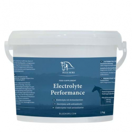 BLUE HORS ELECTROLYT DAILY 25*30G 25*30G