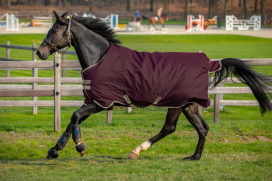 AMIGO HERO RIPSTOP 100 GRAM HORSEWARE 125CM FIG/NAVY