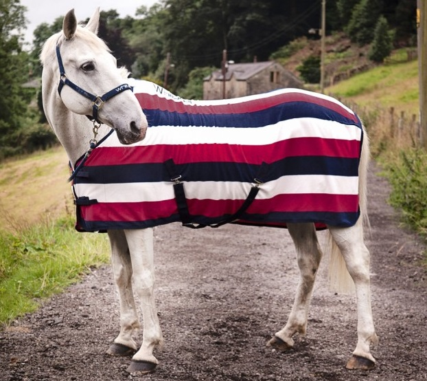 fleecetäcke till häst
